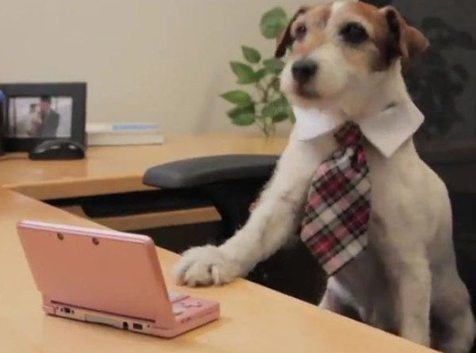 http://cdn-public.ladmedia.fr/var/public/storage/images/news/videos/video-uggie-le-chien-de-the-artist-premiere-journee-de-boulot-chez-nintendo-206305/2043109-1-fre-FR/Video-Uggie-le-chien-de-The-Artist-premiere-journee-de-boulot-chez-Nintendo_portrait_w674.jpg